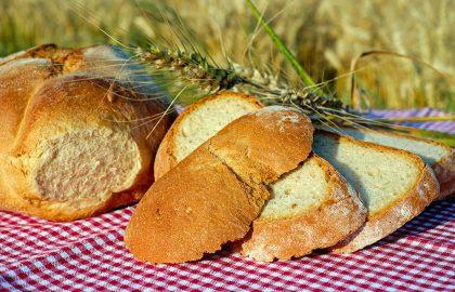 פירורי לחם…
